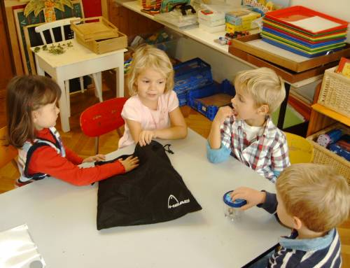 Naturkundekurs im Kindergarten