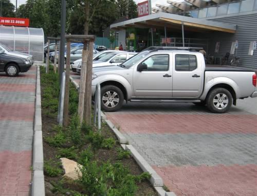 Parkplatzeingrünung auf einem Supermarktparkplatz