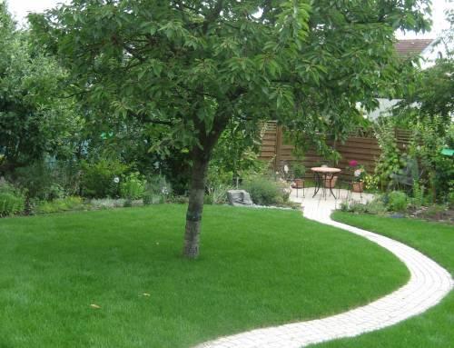 Privatgarten mit dynamischem Weg und Terrasse in einem Wohngebiet im Norden von Ludwigshafen